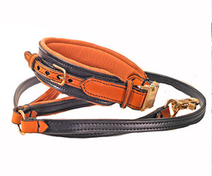 Handmade Fine Leather Leashes