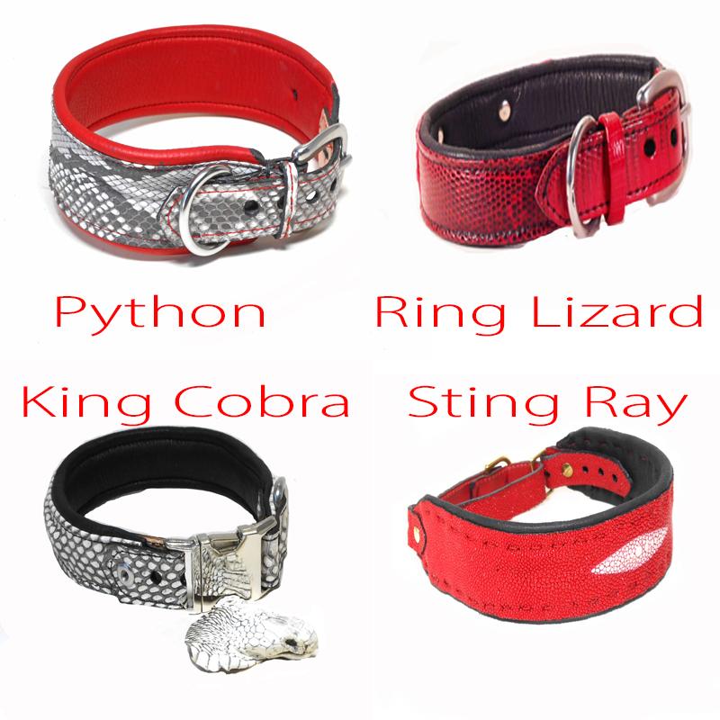 Leather Dog Collar Kit